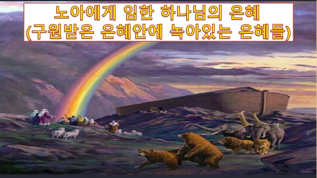 노아에게 임한 하나님의 은혜